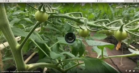 360 Grad Videos vom Kiebitzhof